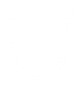 Costanza Insurance Agency Shield